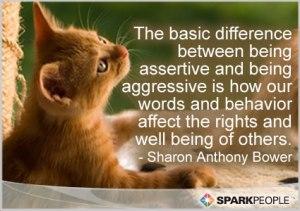 Assertive or Aggressive