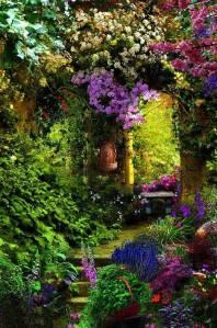Beauty-Garden