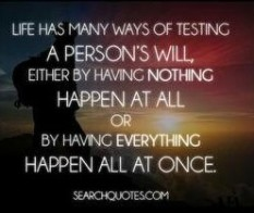 Test - Will