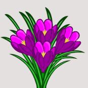 Springflowers2